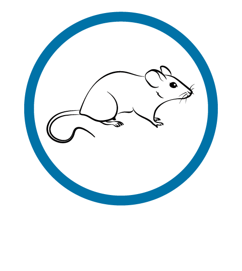 Mammalian icon