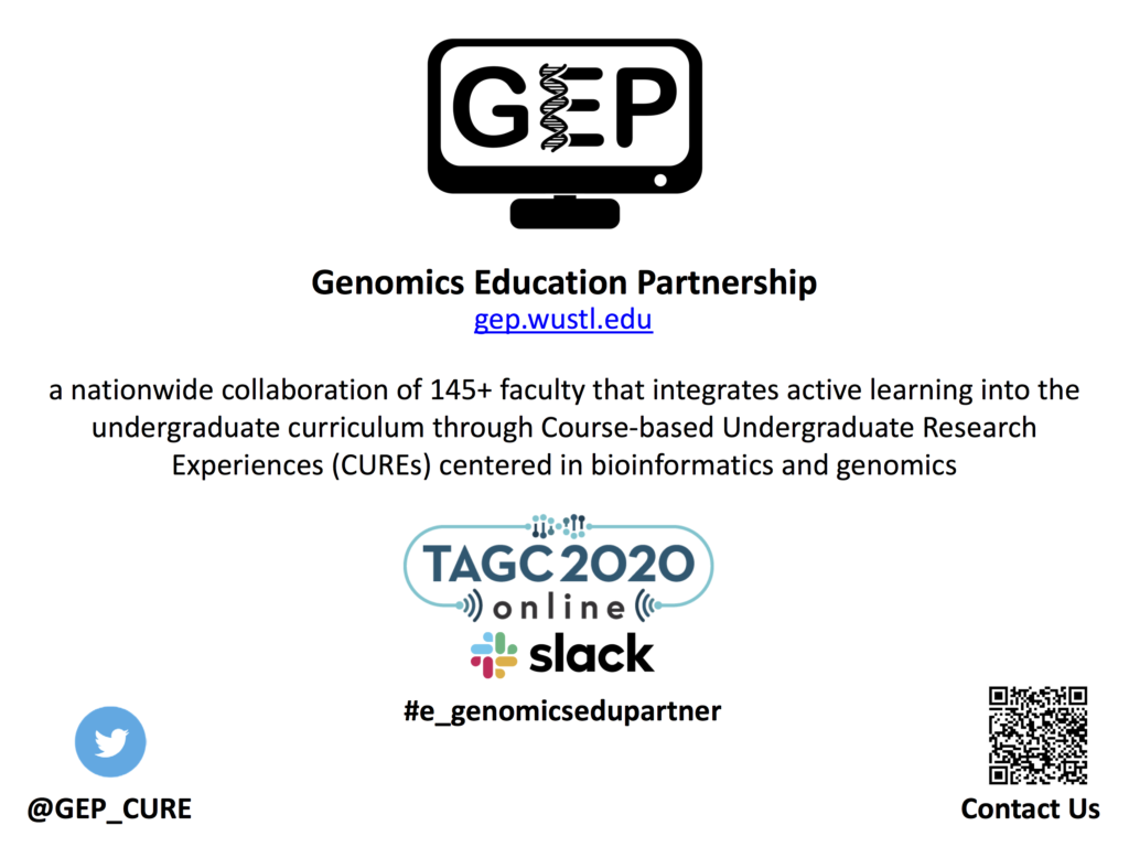 Slide with information on GEP
